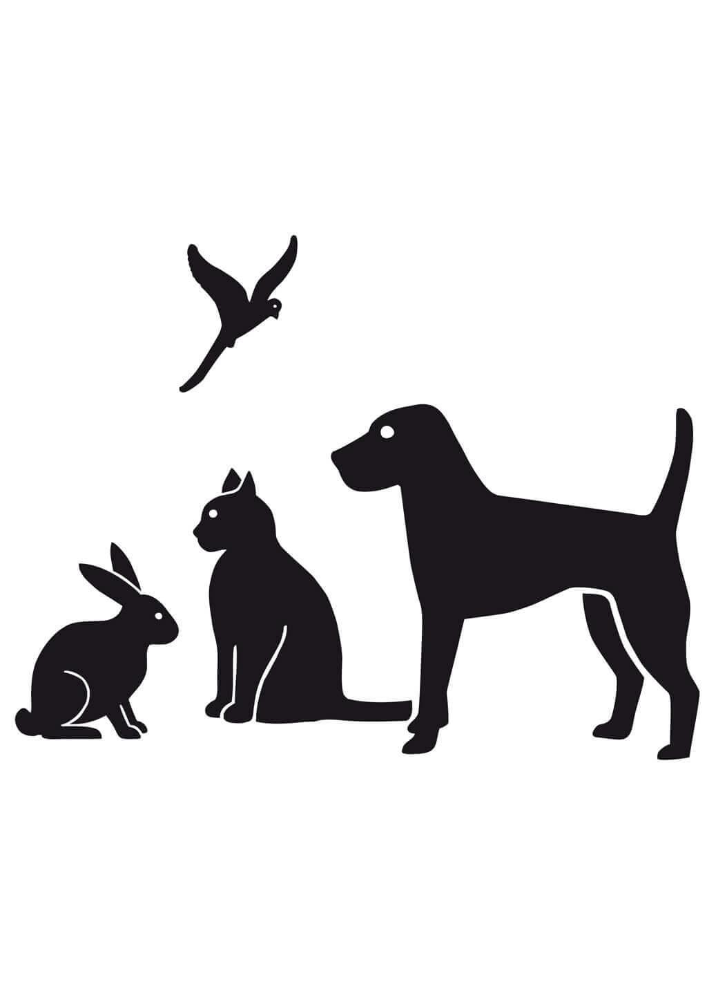 Motiv 5 (Hund, Katze, Vogel, Kaninchen)